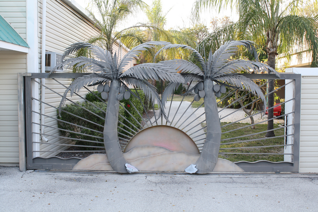 Amazing d palm tree coconut gate shoestring weekends